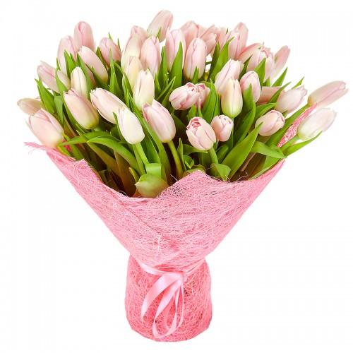 lalele-roz