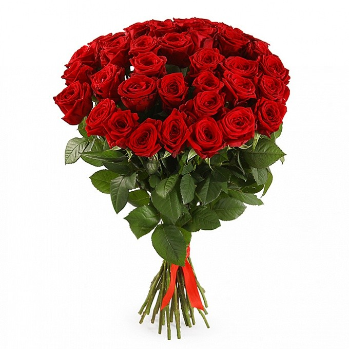 35 Trandafiri roşii