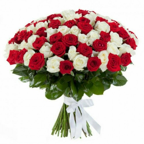 51-trandafiri-alb-rosu