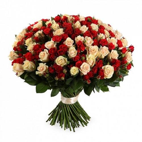 101-trandafiri-alb-rosu