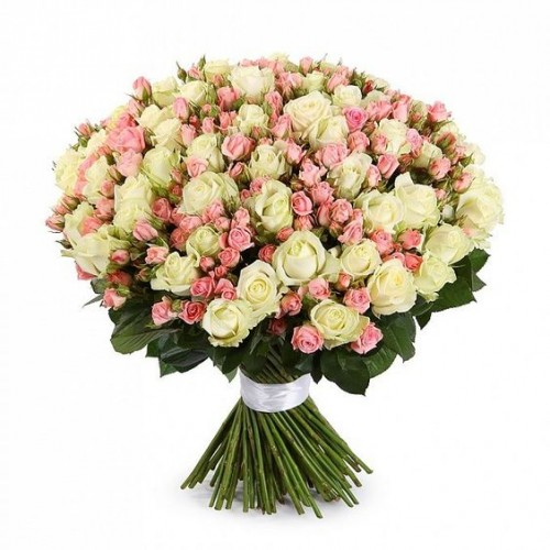 101-trandafiri-alb-roz