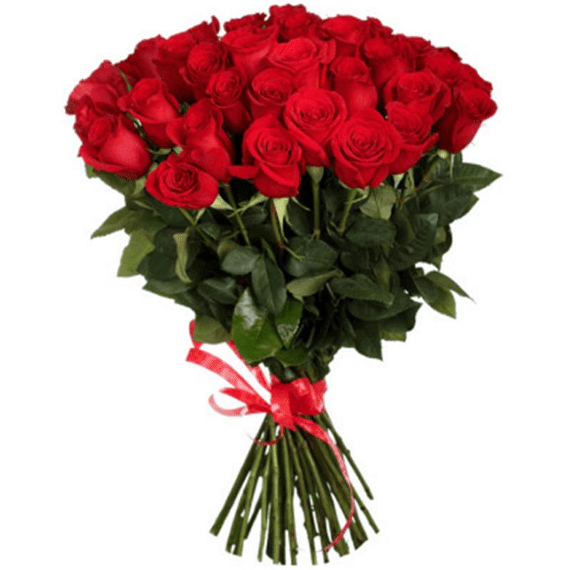 25 Trandafiri roşii