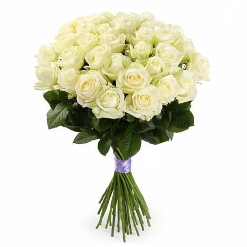 21-trandafiri-albi